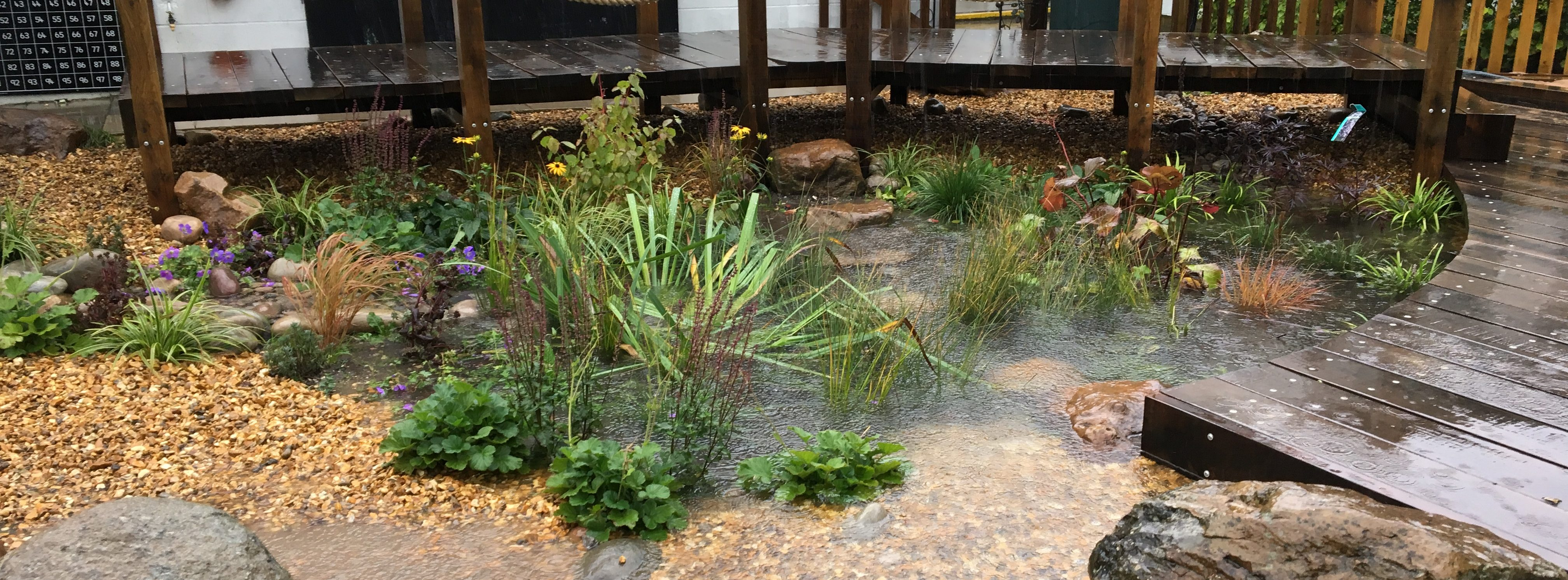 Aldbourne rain garden in heavy rainstorm